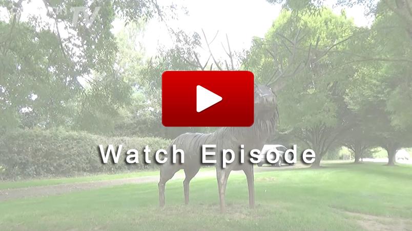 Watch Caravan Finder TV Series 10 Episode 23